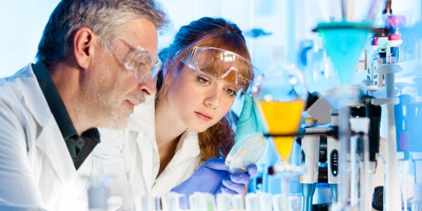 Un servizio per i ricercatori, le imprese e il territorio